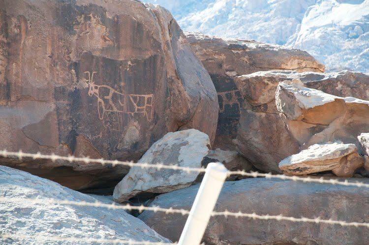 Archeological Evidence For Mount Sinai - Bull Petroglyphs