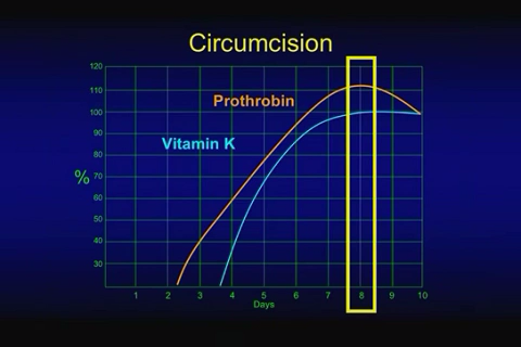 Scientific Evidence For Circumcision On The Eighth Day