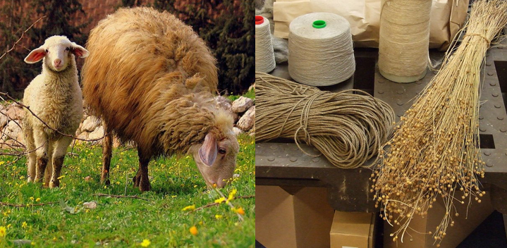 Exegetical Evidence For Not Mixing Wool And Linen